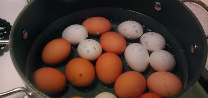 不用水煮鸡蛋,5分钟就能吃上,谁不学谁后悔!